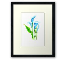 blue calla lily  Framed Print