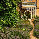 The Garden Room by vivsworld