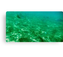 Vanishing Fish Canvas Print