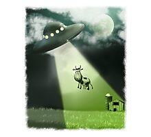 Comical UFO Cow Abduction Photographic Print