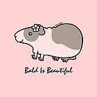 CUTE BALD GUINEA-PIG ... BALD IS BEAUTIFUL  by zoel