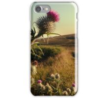 Thistle at Ben Lawers iPhone Case/Skin