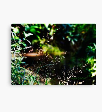 Nature Design Canvas Print