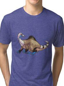 Deinocheirus Tri-blend T-Shirt