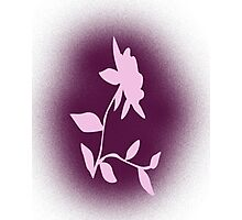 Flower silhouette in pink Photographic Print