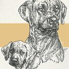 Rhodesian Ridgeback Father & Son by BarbBarcikKeith
