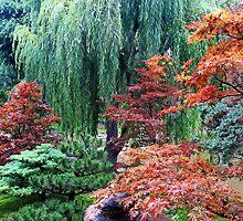 A Japanese Garden by Eileen McVey