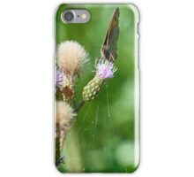 Thistle nectar iPhone Case/Skin