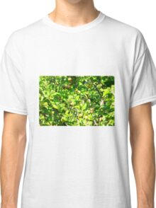 Crab apple tree Classic T-Shirt