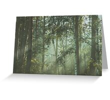 Mystery magical forest Greeting Card