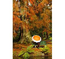 Autumn scene Photographic Print
