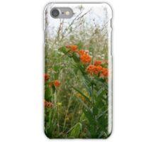 ADD ORANGE TO WILDFLOWERS IN THE OZARKS iPhone Case/Skin