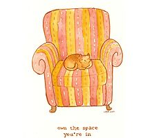 cattism 6: own the space you're in by Whitney Mattila