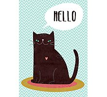 Hello Catty Photographic Print