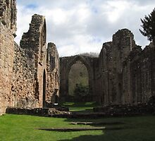 Lilleshall Abbey view 4 by Lawson Clout