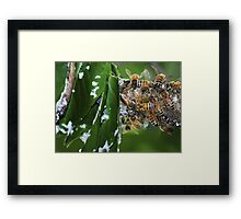 Mind Your Beeswax! Framed Print