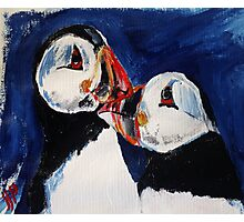 Puffin Wild Birds Fine Art Contemporary Acrylic Painting On Paper Photographic Print