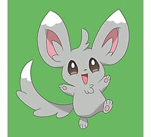 Minccino the Pokemon Photographic Print