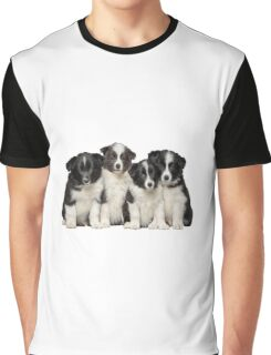 Adorable Border Collie puppies  Graphic T-Shirt