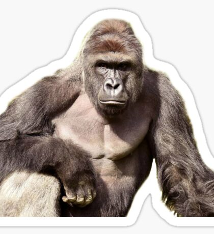 Harambe Sticker