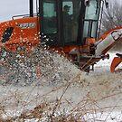 Workin' The Plow by WildestArt