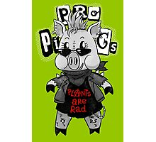 Punk Pig Photographic Print