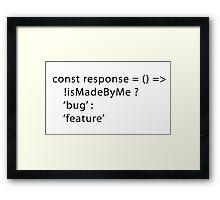 Developer Response Function (Javascript) Framed Print