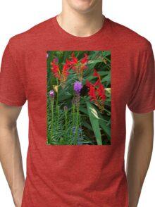 A Garden of Visual Delights Tri-blend T-Shirt
