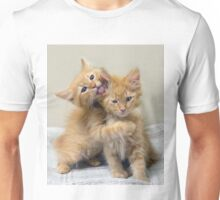 Orange Tabby Kittens Unisex T-Shirt