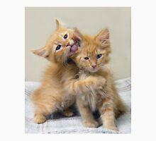 Orange Tabby Kittens Unisex T-Shirt