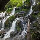 Catawba Middle Falls by Bill Wetmore