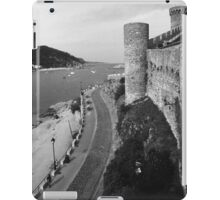 From the Castle Wall iPad Case/Skin