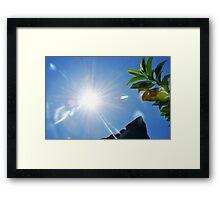 Good Morning! Framed Print