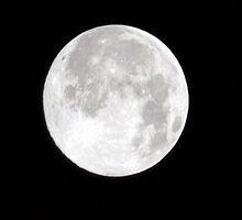 Full Moon by fegan10