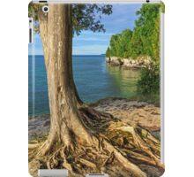 Tenacious Grip iPad Case/Skin