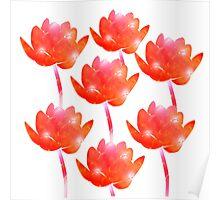 Orange Lotus collection Poster