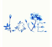 love of rose  Photographic Print