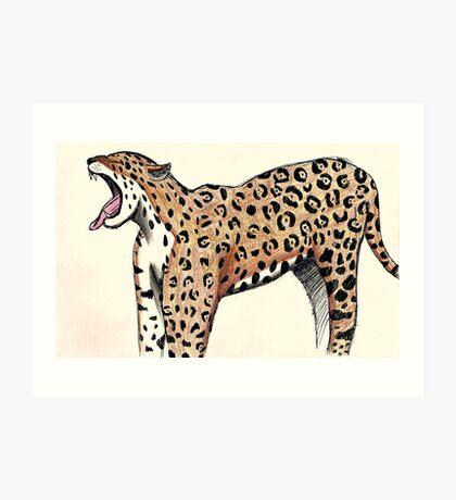 Jaguar Sketch Art Print