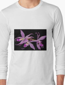 Laelia Anceps orchids Long Sleeve T-Shirt