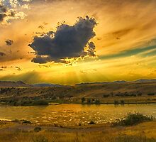 Golden Sunset by Donna Ridgway