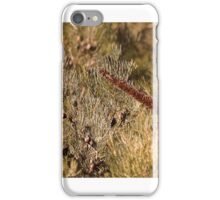 Confused Xanthorrhoea iPhone Case/Skin