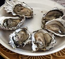 Oysters by lynn carter