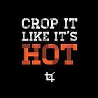 Crop it like it's hot by jasebloordesign