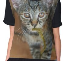 What are you looking at? Chiffon Top