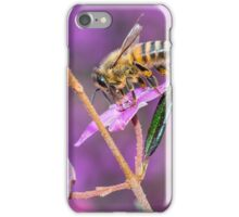 Bee with Pollen, West Head lookout, NSW iPhone Case/Skin