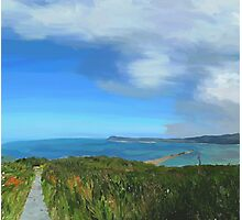Fishguard Bay Painting Photographic Print