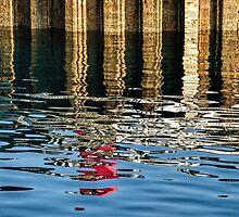 Marking the Tides by Susie Peek