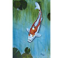 Koi #2 Photographic Print