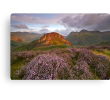 Pikes and Heather Canvas Print