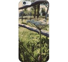 July Evenings iPhone Case/Skin